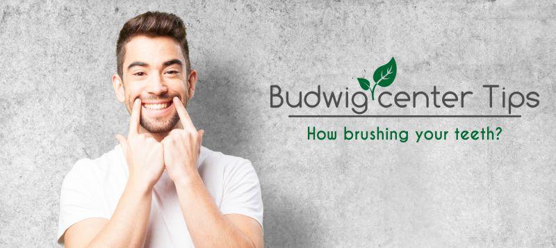 Budwig Center Tips, precautions, brushing, teeth
