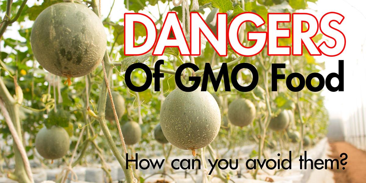 healthy foods, gmo foods