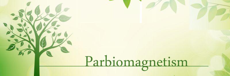 Par Biomagnetism Therapy