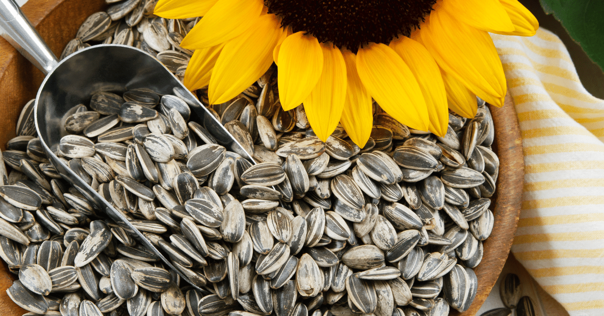 sunflower seeds contain Vitamin E which is a vital antioxidant that could protect from fatty live