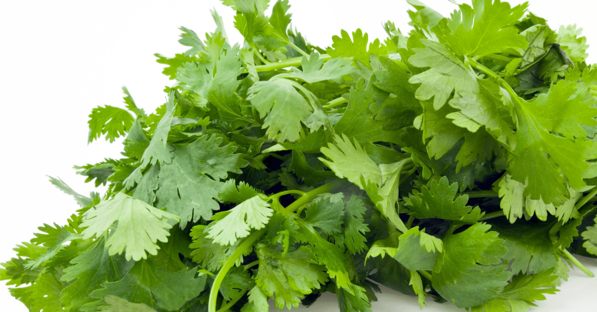 Parsley, Basil, Cilantro, and other nutrient-rich herbs